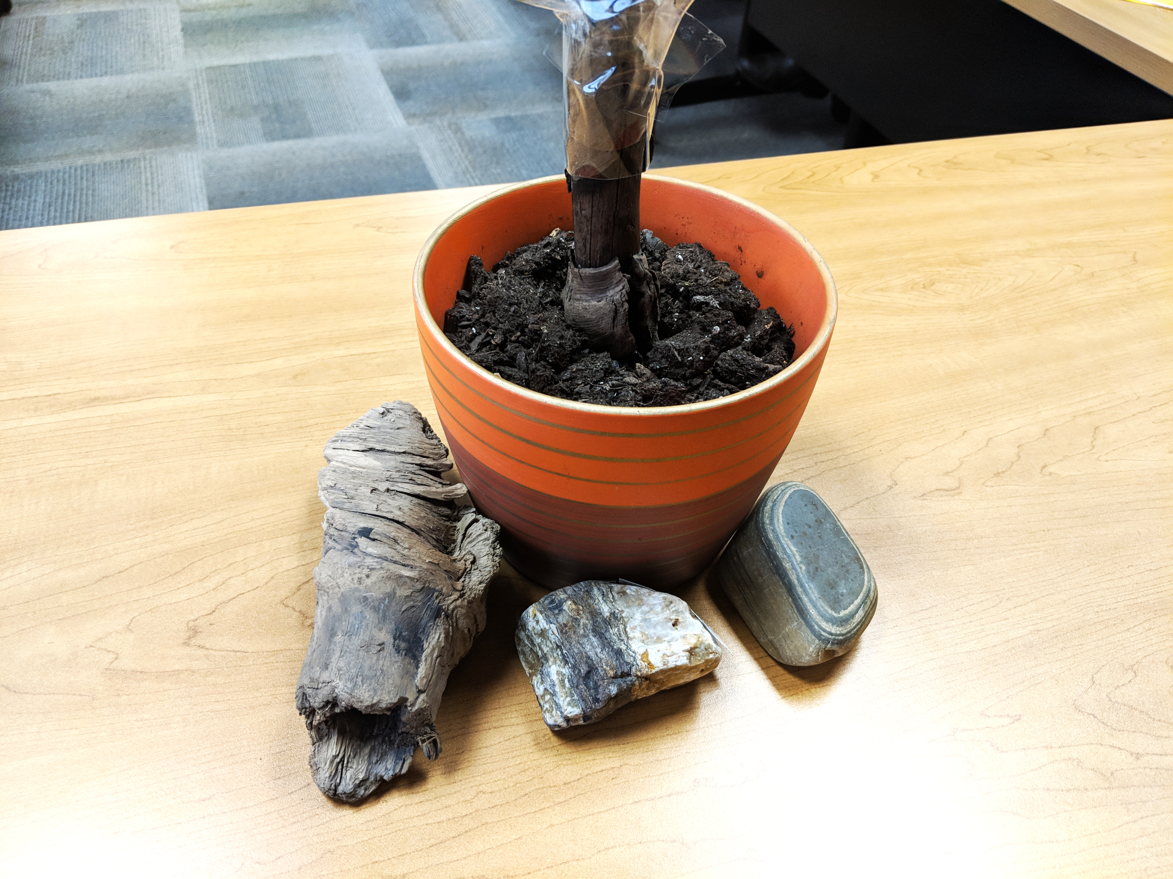 two rocks and two sticks used in a teambuilding exercize